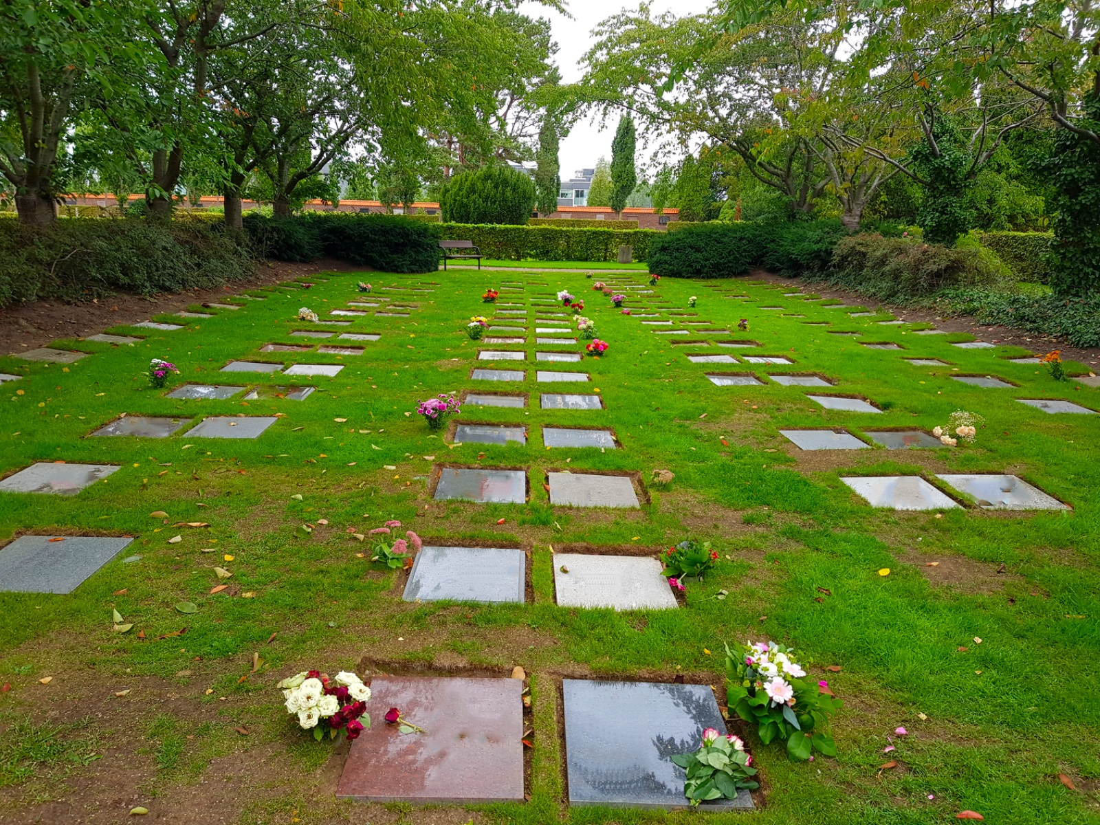 Askgravplats gravskick Evighetens Vila begravningsbyrå